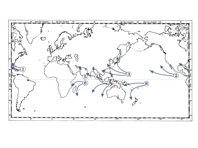 Trópusi ciklonpályák